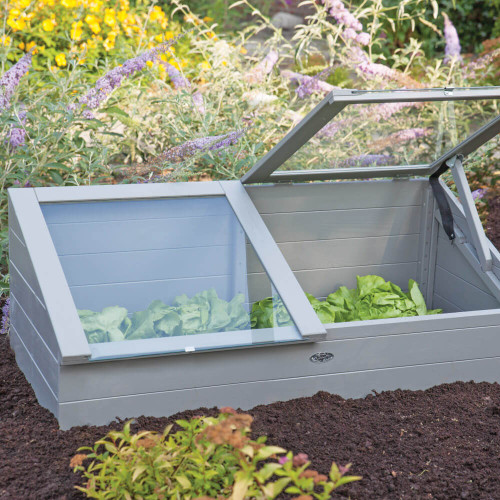Cold Frame For Early Plant Start
