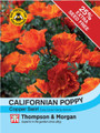Californian Poppy Copper Swirl