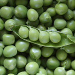 Pea & Bean seeds
