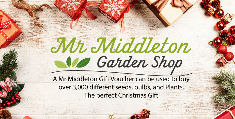 Mr Middleton Gift voucher
