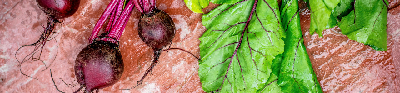 beetroot-chard-seeds-banner-category.jpg