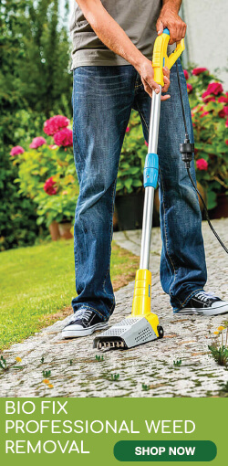 bio-fix-professional-weed-removal