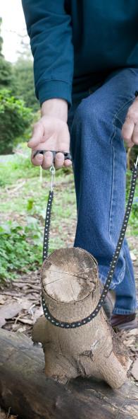 Darlac Garden Tools
