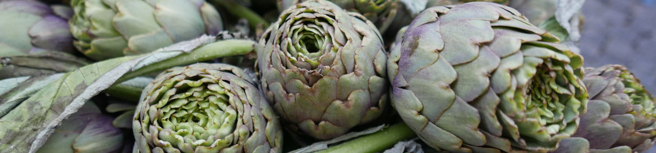 other-vegetable-seeds-banner-category.jpg