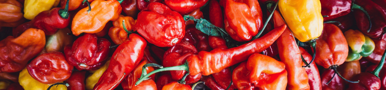 peppers-chillies-seeds-banner-category.jpg