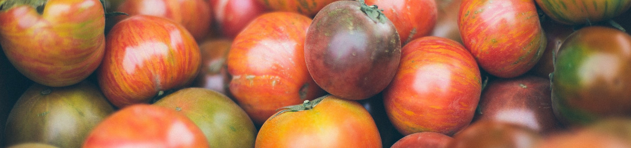 tomato-seeds-banner-category.jpg