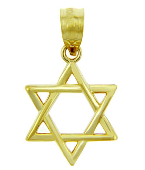 Jewish Charms and Pendants - 14K Yellow Gold Star of David Pendant - The Magen David