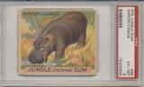 1934 JUNGLE GUM #69 HIPPOPOTAMUS PSA 6 EX-MT  #*