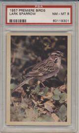 1957 PREMIERE BIRDS..LARK SPARROW  PSA 8 NM-MT   #*