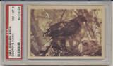 1957 PREMIERE BIRDS..COOPER'S HAWK  PSA 8 NM-MT  #*