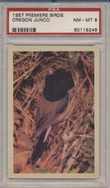 1957 PREMIERE BIRDS..OREGON JUNCO  PSA 8 NM-MT  #*