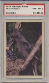 1957 PREMIERE BIRDS..PHAINOPEPLA  PSA 8 NM-MT  #*