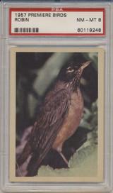 1957 PREMIERE BIRDS..ROBIN  PSA 8 NM-MT   #*
