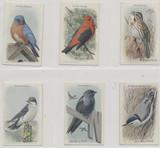 1938 Canada Useful Birds Of America Series 9 14 Of 15#*