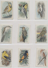 1938 Canada Useful Birds Of America Series 10 14 Of 15  #*
