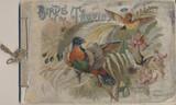 1888-1890 A-4 BIRDS OF THE TROPICS (CUT)  #*