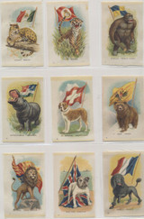 1915 SC1 Imperial Tobacco Silks Canada Animal With Flag 49/55 Different 1 Variation  #*