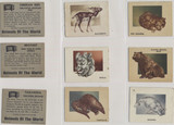 1950 Topps Animals Of The World Set 100  #*
