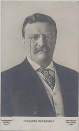 1904 Postcard Theodore Roosevelt New York Portrait  #*