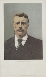 1902 Post Card #6265 President Theodore Roosevelt Picture  #*