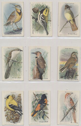 1938 J9-6 Useful Birds Of America 10 Set 15  #*