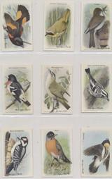 1938 J9-5 Useful Birds Of America Series 9 Set 15   #*