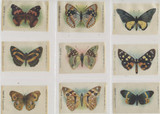 1910 S-9-2 BUTTERFLIES & MOTHS (WITH TOKIO CIGARETTES AT BOTTOM) LOT (26) 3 1/4 X 2 INCHES  #*