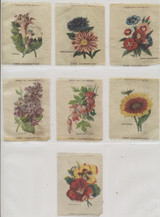 1910 S-49-2 FLOWERS LOT OF (7) 3 BY 4 INCHES  #*