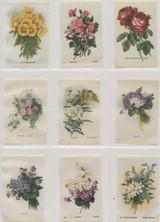 1913 SC7 Garden Flowers Of The World Lot 17/55  #*