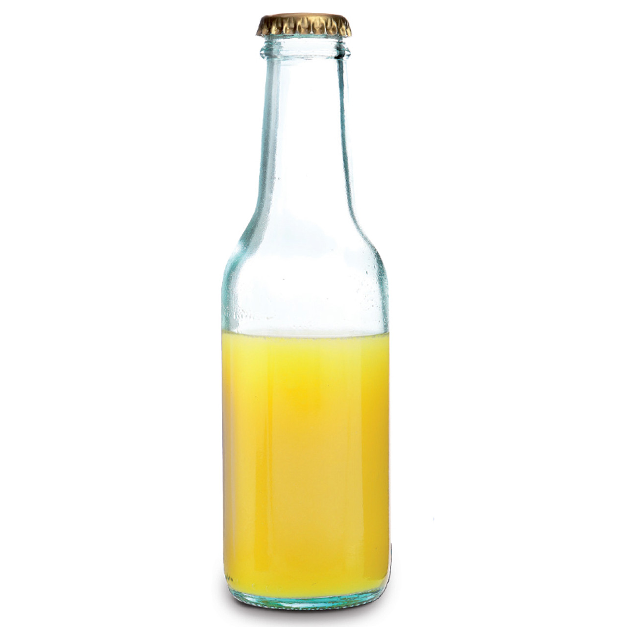 Ginto Glass Bottle 20cl