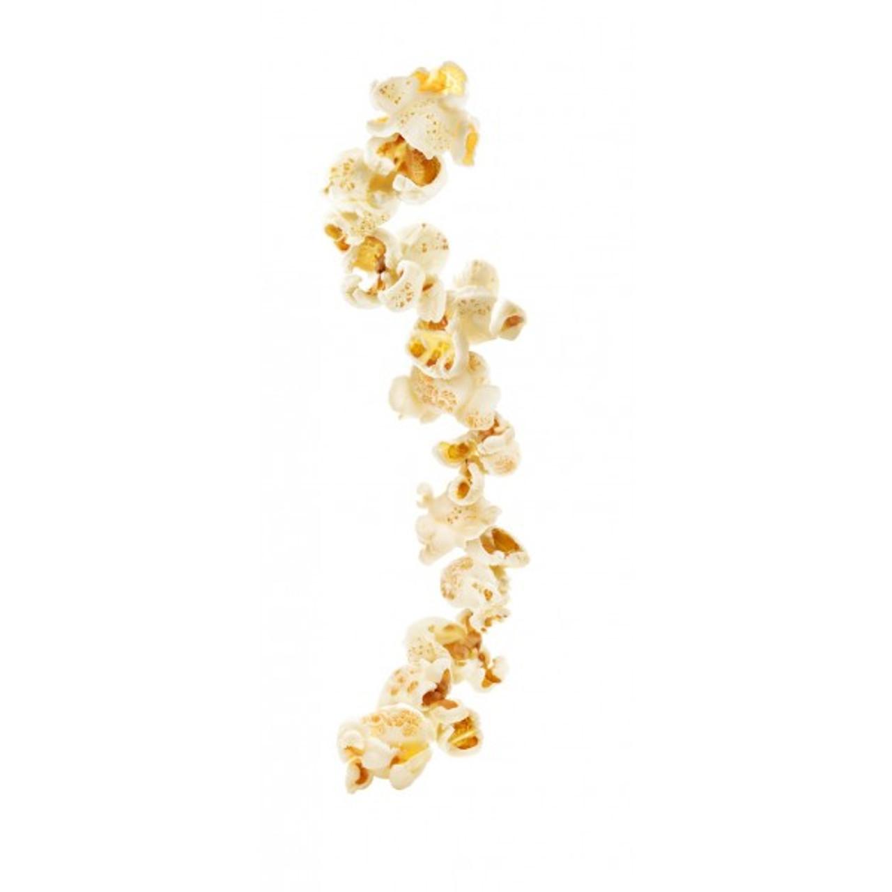 1883 Syrup Popcorn - 1L (Glass Bottle)