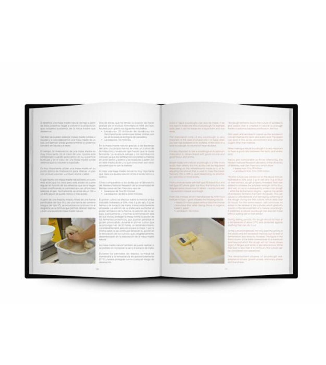 Process & Utilities - Sourdough