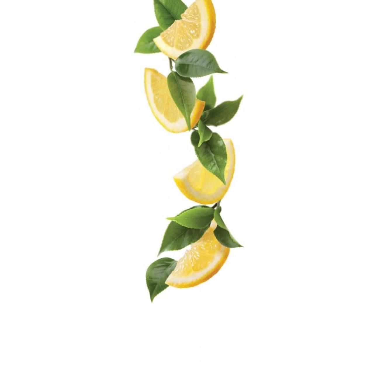 1883 Syrup Lemon Ice Tea - 1L (Glass Bottle)