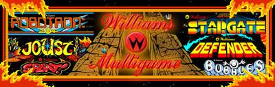 Multi Williams Multigame Video Arcade Marquee