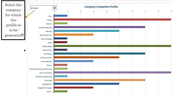 Company Competitive Profile