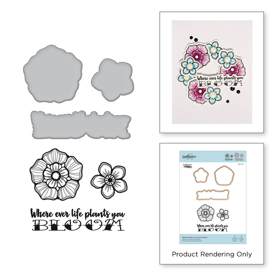 Bloom Where You Are Planted Stamp and Die Set Inked Messages Collection by Stephanie Low