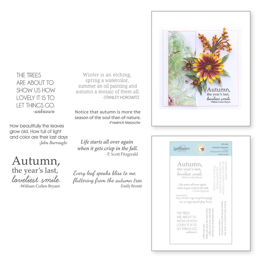 Autumn Quotes Clear Stamp Set from Susan's Autumn Flora by Susan Tierney-Cockburn