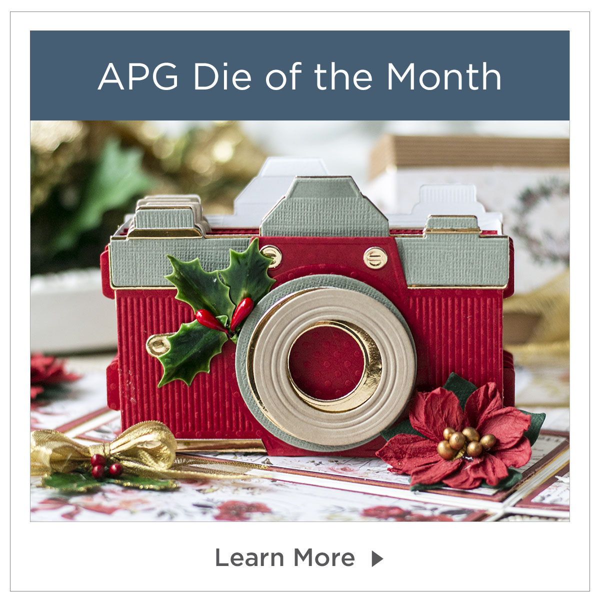 APG Die of the Month