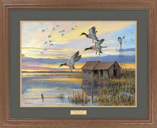 duck country mallard duck framed wildlife art print