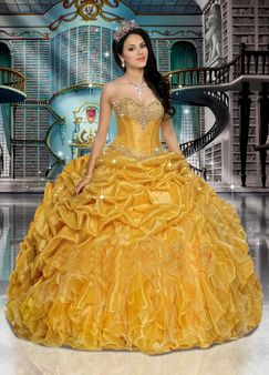 Quinceanera Dress  QPS27635