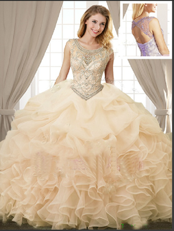 Quinceanera Dress  QSJQDDT862002