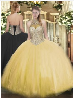 Quinceanera Dress QSJQDDT1053002