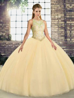 Champagne Quinceanera Dress QSJQDDT2117002-2