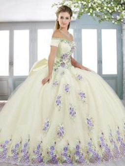 Floral Champagne Quinceanera Dress