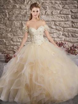 Delicate Champagne Quinceanera Dress