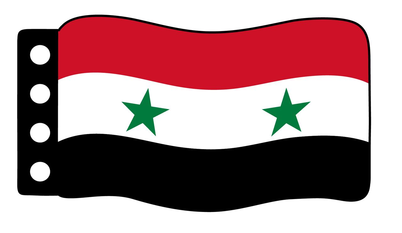 Flag - Syria/UAR Flag