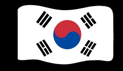 Flag - South Korea