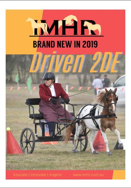 Driven 2DE Handbook