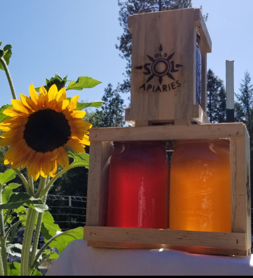 6 lbs Oregon Wildflower Honey Spring and Summer Harvest