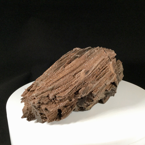 Semi Petrified Wood from Eastern Germany, 1000 grams